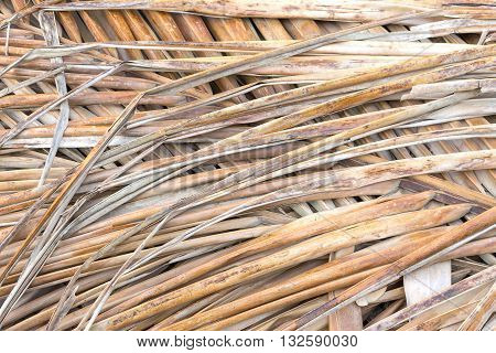 Old coconut leaf dried. that overlap pile. Abstract background of dried coconut leaves