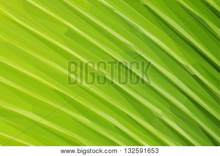 Low poly illustration texture of fresh green leaf with vein macro background