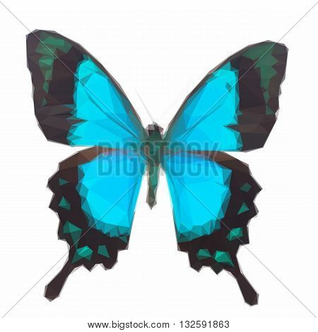 Low poly illustration of Sea Green Swallowtail butterfly