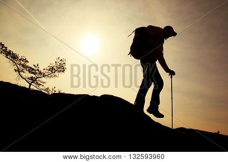 Man Hiker Make Down Step, Legs In Boots And Poles. Sunny Day On Mountain Peak Rock. Small Pine Bonsa