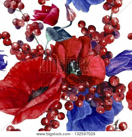 Red and blue anemones flower watercolor pattern isolate on white background