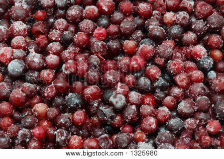 Frozen Berries For Background
