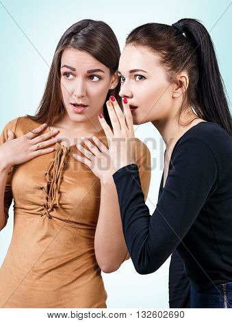 Young girls gossiping some secret over blue background