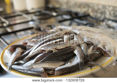 fresh catch anchovies in a white dish on a hub
