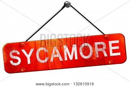 sycamore, 3D rendering, a red hanging sign