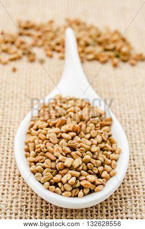Fenugreek seeds in white spoon on sack background.