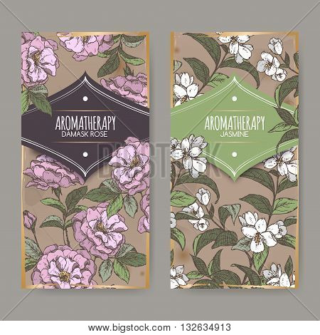Set of two labels with Damask rose and jasmine color sketch on vintage background. Aromatherapy series. Great for traditional medicine, perfume design, cooking or gardening labels.