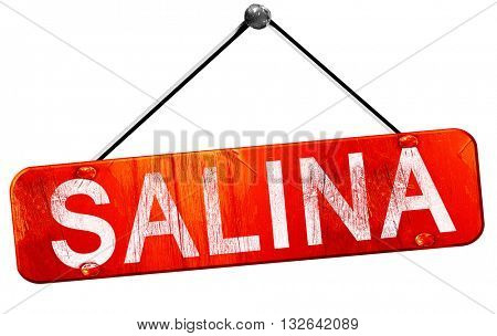 salina, 3D rendering, a red hanging sign