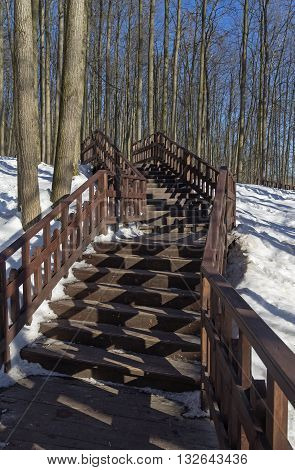 Wooden stairs on the of the ravine. Forest park in Moscow Russia.