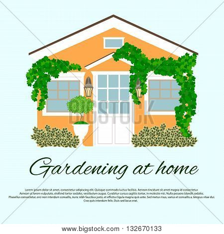 English-style house and garden plants. Gardening at home.