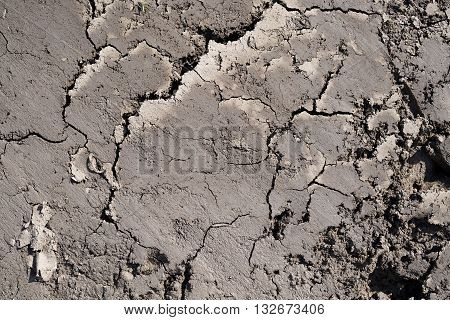 parched soil on a Field in Summer
