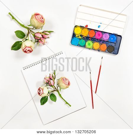Sketchbook watercolor brushes paper rose flowers. Artistic background. Flat lay