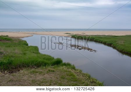 The river is framed by green shore. The beach and the sea on the horizon.