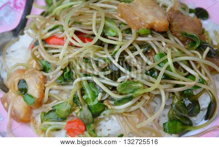stir-fried sunflower sprout with crispy pork in oil on rice