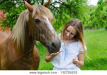 Beautiful young woman and peasant bay horse