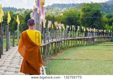 Su Tong Pae Bridge.The Bamboo Bridge of Faith Across the Rice Fields of Mae Hong Son ThailandMaehongsorn Province