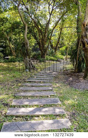 nature walkway in country forest Bangkok Thailand