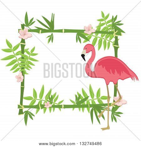 Vector illustration tropical island frame border poster with exotic flowers plants and birds. Bamboo frame. Pink flamingo