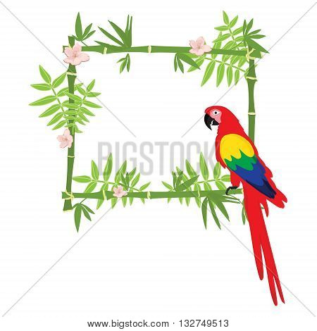 Vector illustration tropical island frame border poster with exotic flowers plants and birds. Bamboo frame. Macaw parrot
