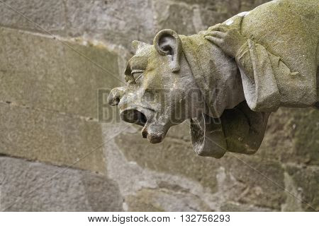 A weird gargoyle on the Cathedral of Carcassonne
