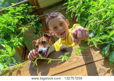 Smiling boy with dog on treehouse. Summer time!