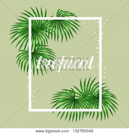 Paradise card with palms leaves. Design for advertising booklets, banners, greeting cards and flayers.