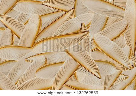 many wing of flying termite for background