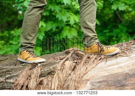 Man in the yellow shoes walking on a log. Fallen tree in the forest. The man widely striding.