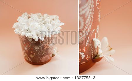 Collage of summer white flowers in brown pot