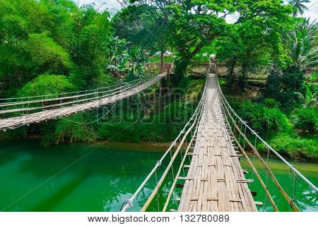 Bamboo hanging bridge over river in tropical forest, Bohol, Philippines