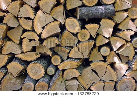 Wood harvested in the winter, stacked in the woodpile
