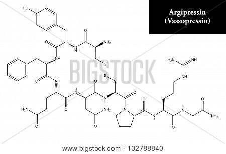 Molecular structure of Argipressin (Vasopressin) - hormone also known as antidiuretic hormone (ADH).
