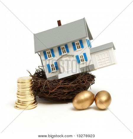 House In A Nest