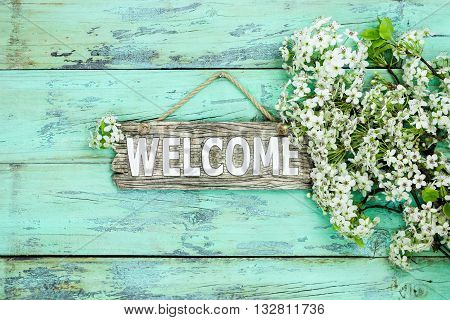 Wood welcome sign hanging on antique rustic mint green wooden background by spring tree blossoms