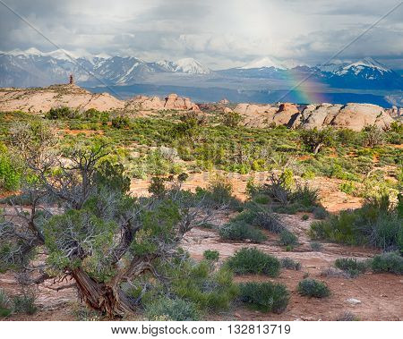 Rainbow after a storm moves through the La Sal Mountains, at Arches National Park, near Moab, Utah.