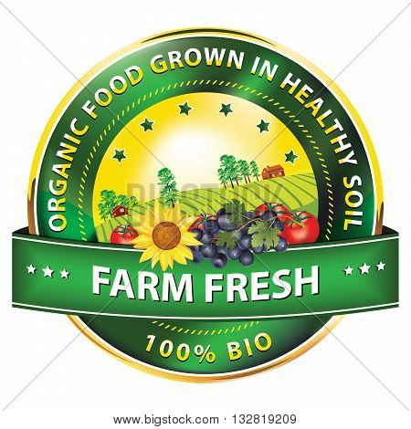 Farm fresh. Food grown in healthy soil, 100% Bio - label / stamp with fruits and vegetables: grapes, tomatoes, sunflower. Print colors used