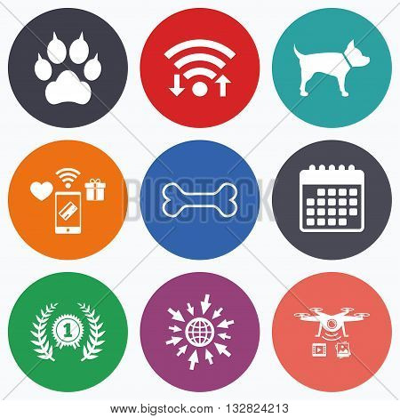 Wifi, mobile payments and drones icons. Pets icons. Cat paw with clutches sign. Winner laurel wreath and medal symbol. Pets food. Calendar symbol.