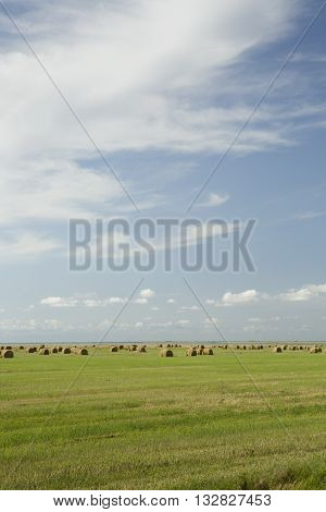 stack of hay lying in a field after harvest on a summer day