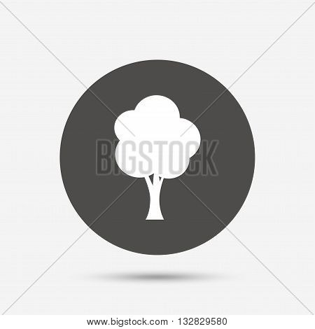 Tree sign icon. Forest symbol. Gray circle button with icon. Vector