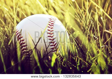 Baseball game. Baseball ball in grass. Instagram vintage picture.