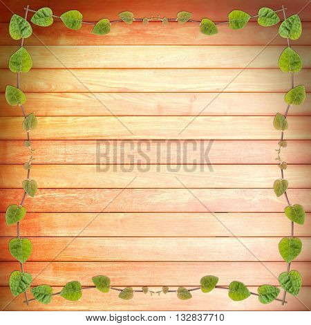 green creeper plant frame on wood plank background