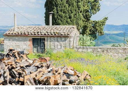 Sicilian landscape with ancient and modern house with olive and almond trees in bloom.