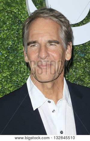 LOS ANGELES - JUN 2:  Scott Bakula at the 4th Annual CBS Television Studios Summer Soiree at the Palihouse on June 2, 2016 in West Hollywood, CA