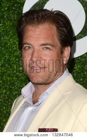LOS ANGELES - JUN 2:  Michael Weatherly at the 4th Annual CBS Television Studios Summer Soiree at the Palihouse on June 2, 2016 in West Hollywood, CA