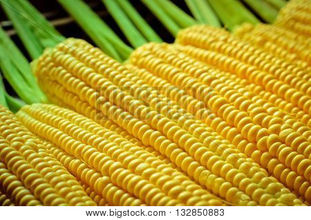 a lot of yellow corns as a background