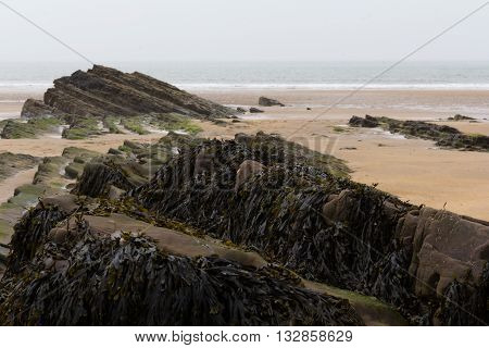 Rocks On The Shore In Bude, Cornwall