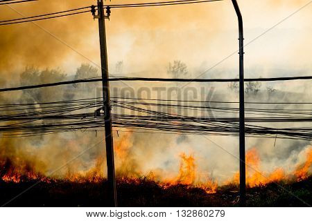 wildfire at side of road sihouette background and wallpaper