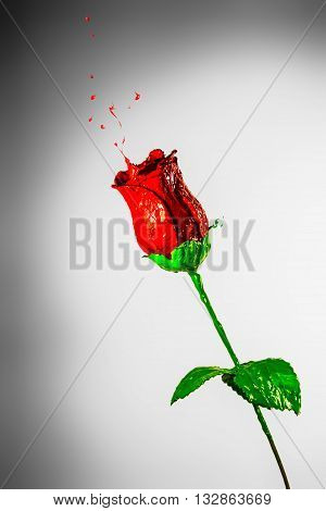 Beautiful rose made of red and green paint on a grey background
