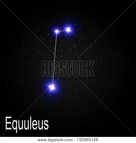 Equuleus Constellation with Beautiful Bright Stars on the Background of Cosmic Sky Vector Illustration EPS10