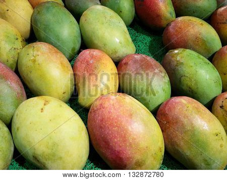 Variety of mangoes in India , dusseri, langda, available during the summer months in India. Very popular summer fruits in India and are a healthy alternate to many sweets